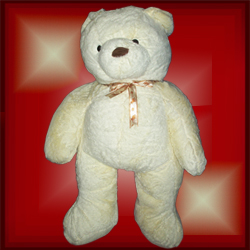 """Forever"" White Teddy"